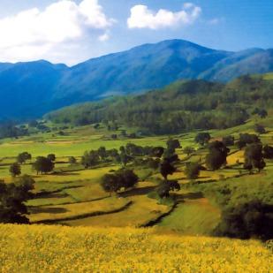araku-valley-4_big