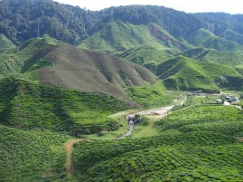 Best-and-Top-Hill-Stations-In-India1