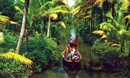 kerala_backwater1-25lzwd9