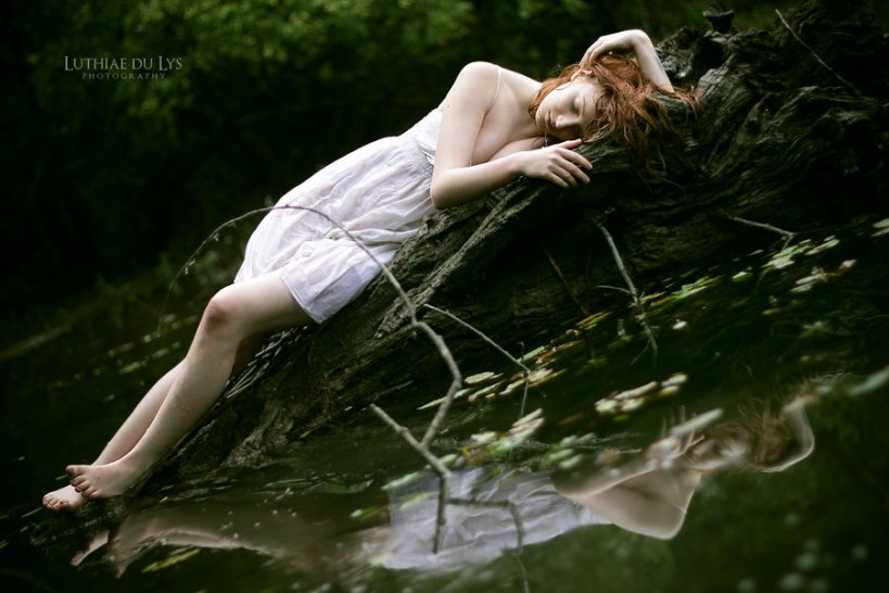 dead_swan_by_luthiae-d3j8nz5