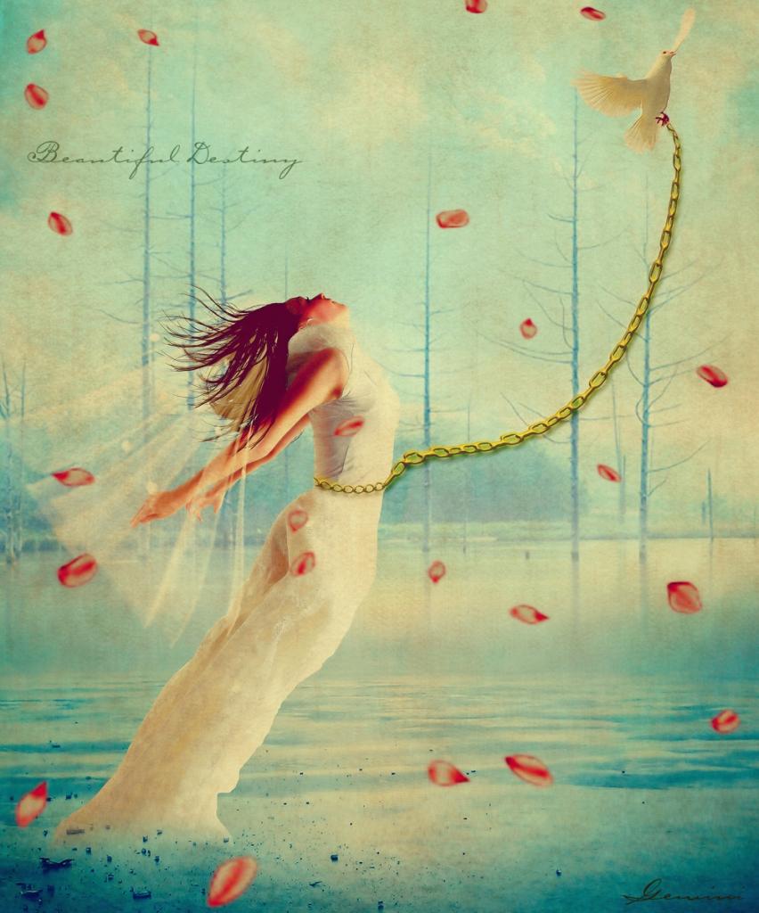 freedom-of-soul